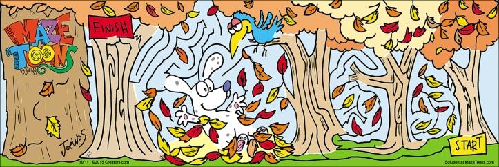 fall maze