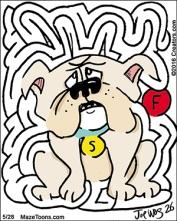 bulldogmaze
