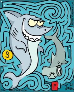 sharkdaily